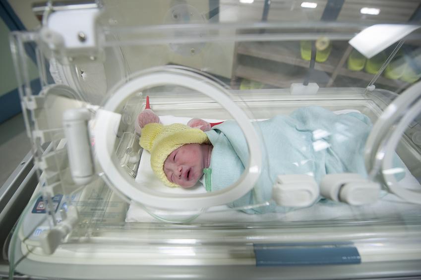 inkubatorjpg