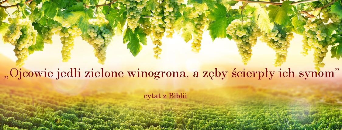 winogronaznapisem_1jpg