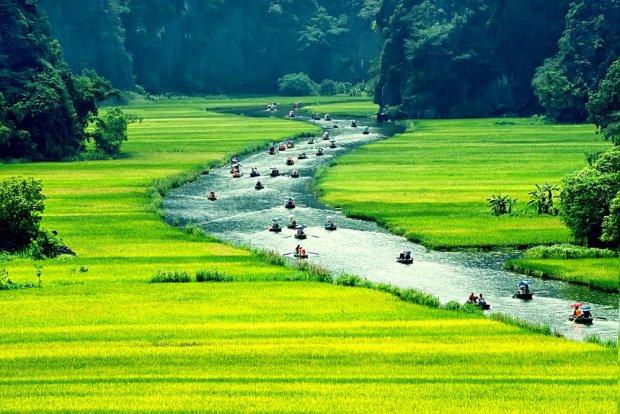 z15266936qmekong-biegnie-kanalami-pomiedzy-polami-ryzowymi--jpg