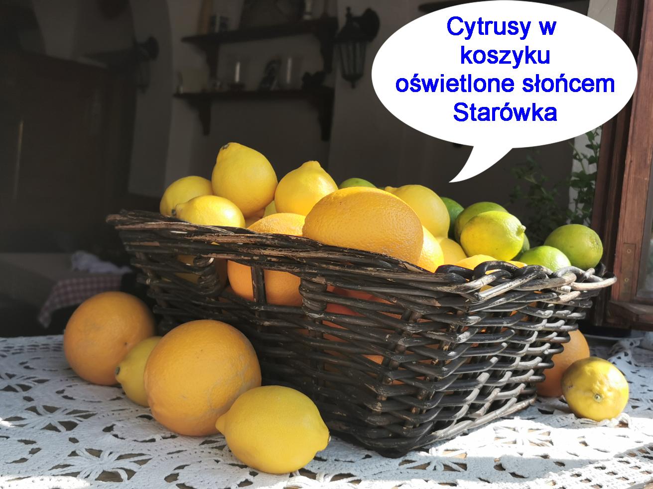 cytrusyjpg