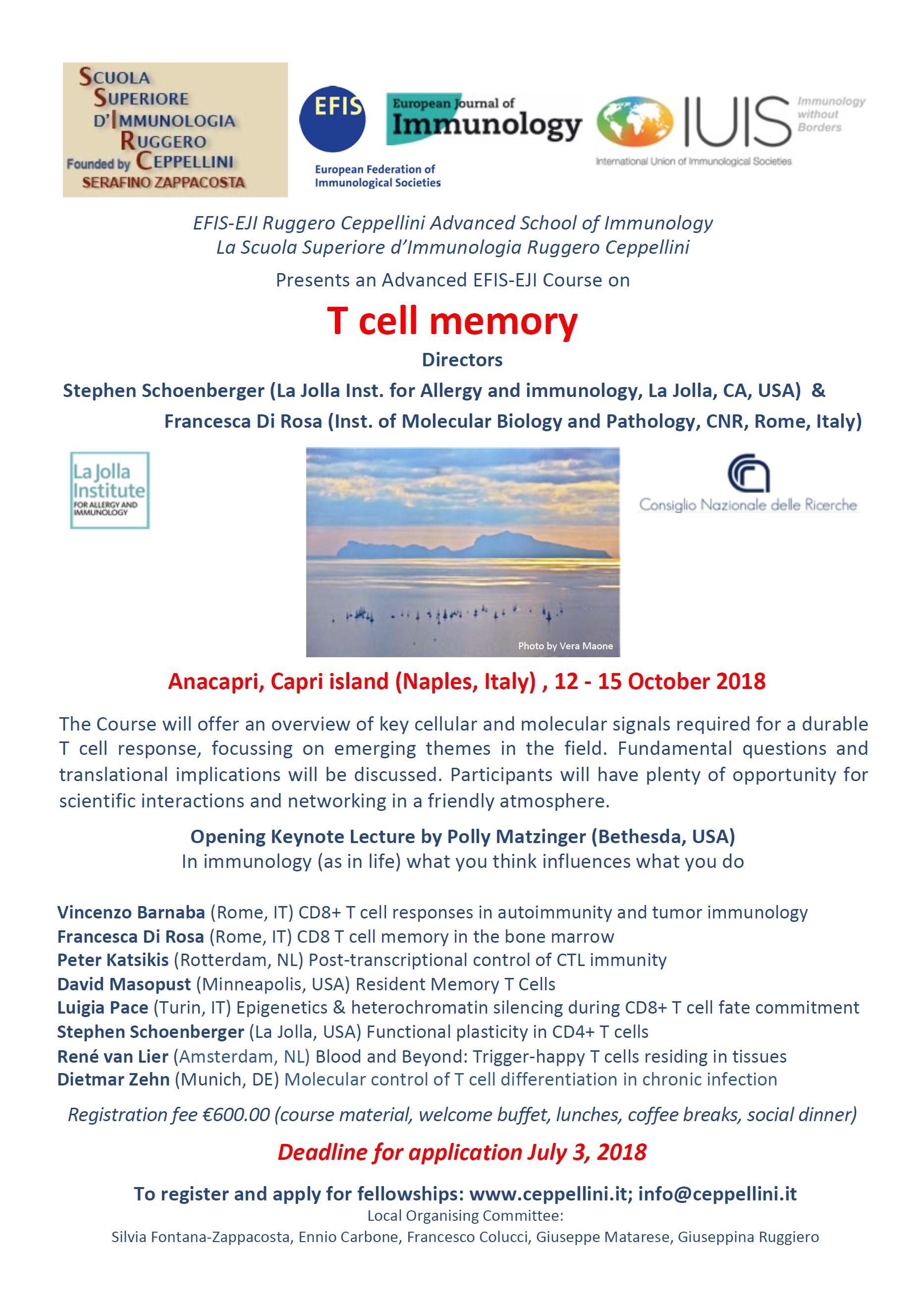 T cell memoryjpg