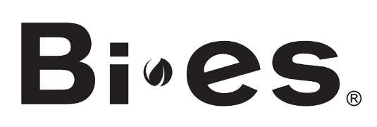 logo_BIES_newjpg